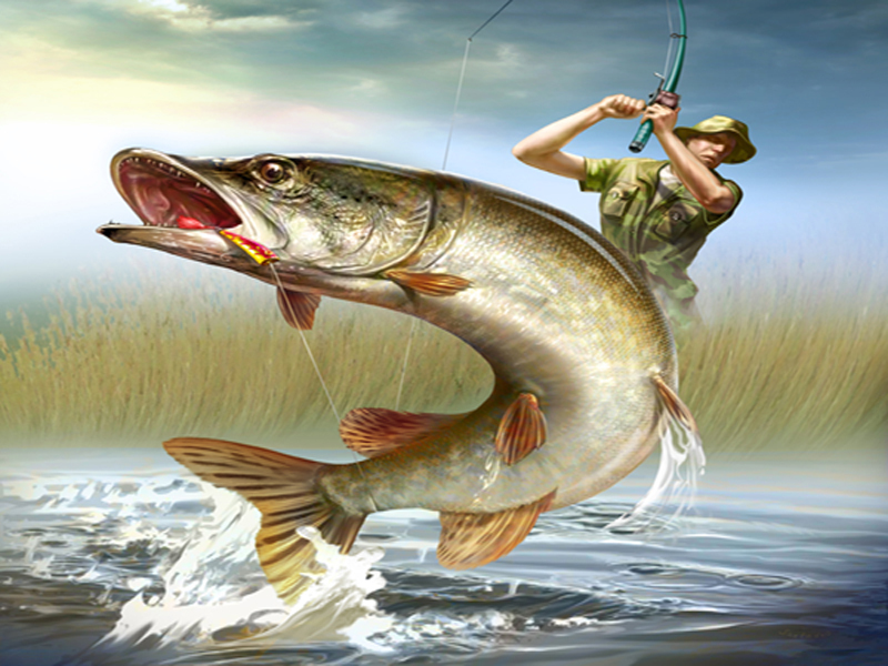 рыбалка на спиннинг рыбак рыбаку